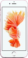Apple iPhone 6S Remarketed